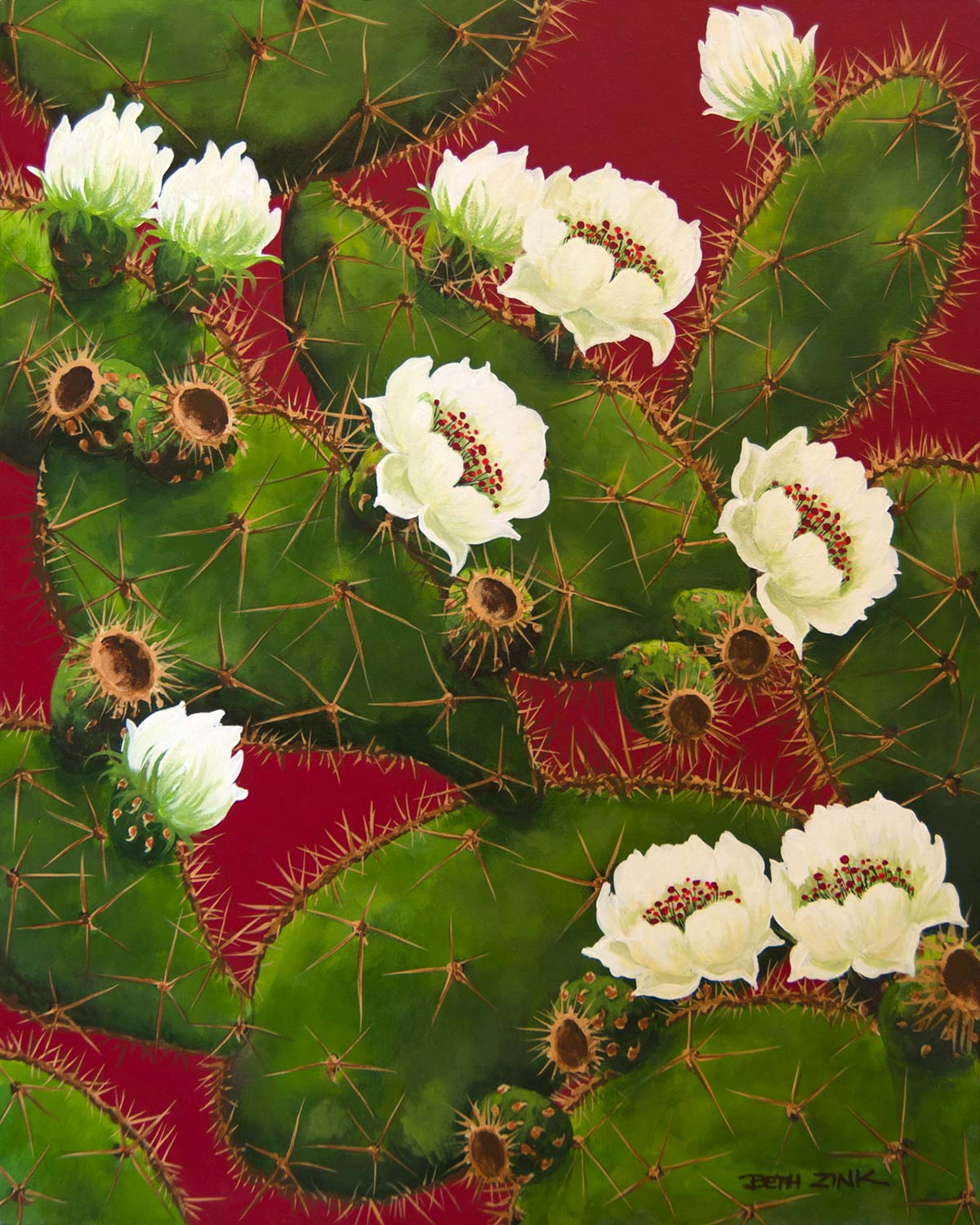 beth zink painting prickly pear cactus blooming white flowers