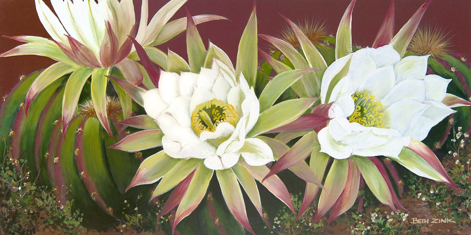beth zink painting barrel cactus with white flowers