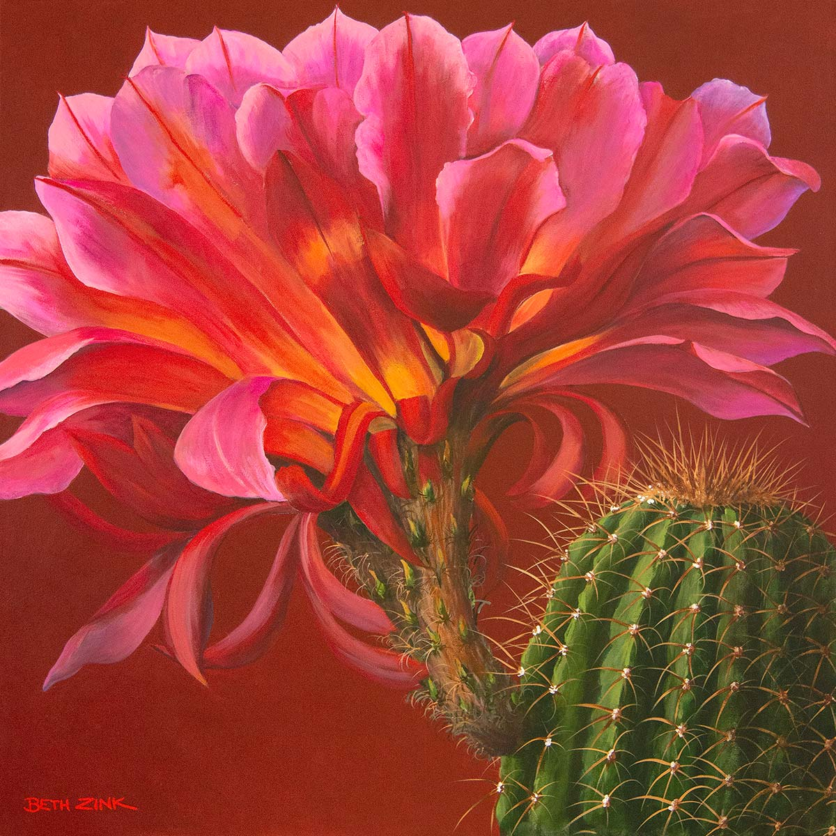 beth zink painting cactus with large pink flower