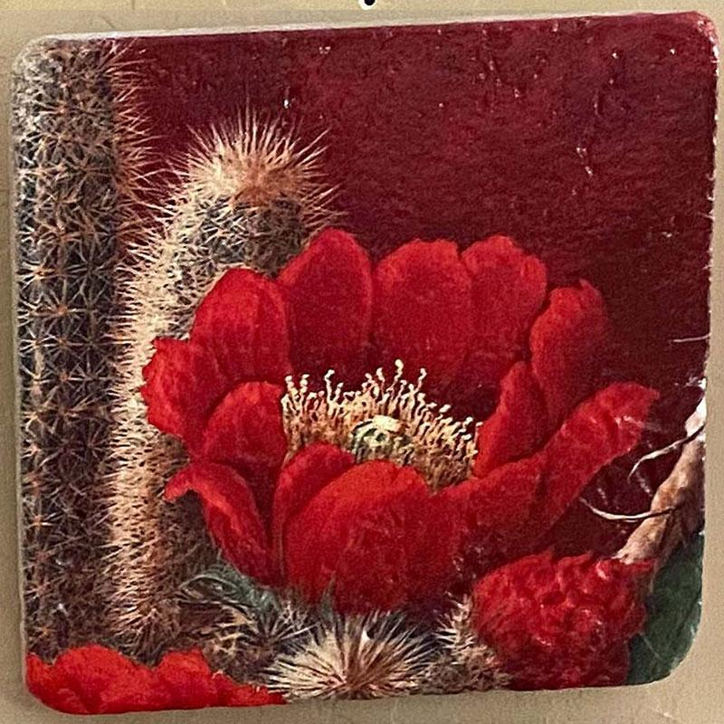 beth zink painted art tile with cactus and big red flower