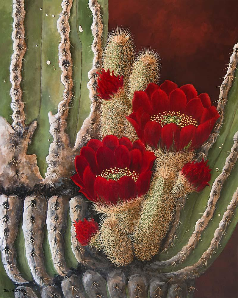beth zink painting cactus with red flowers blooming