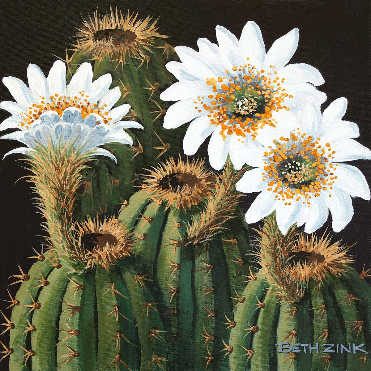 beth zink painting spiny cactus blooming white flowers