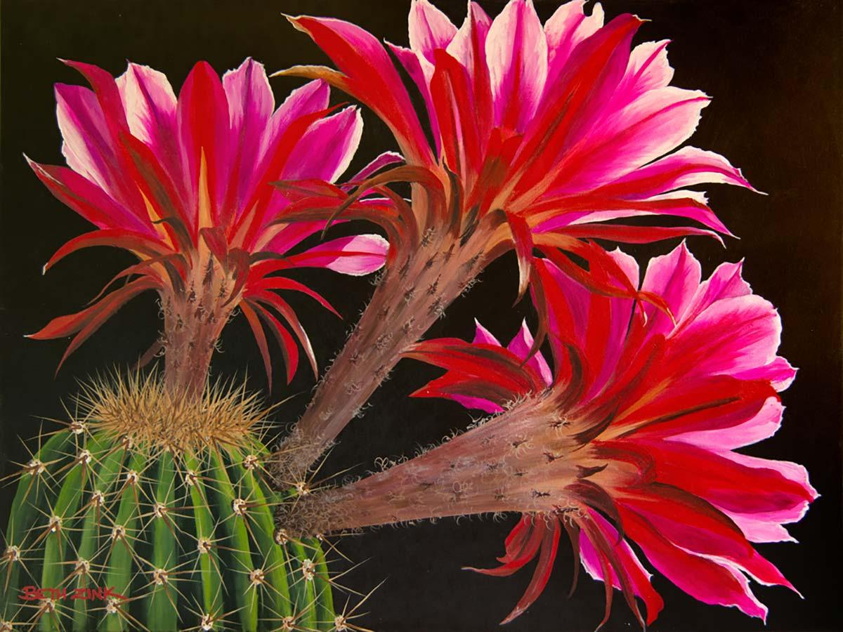 beth zink painting cactus with pink flowers