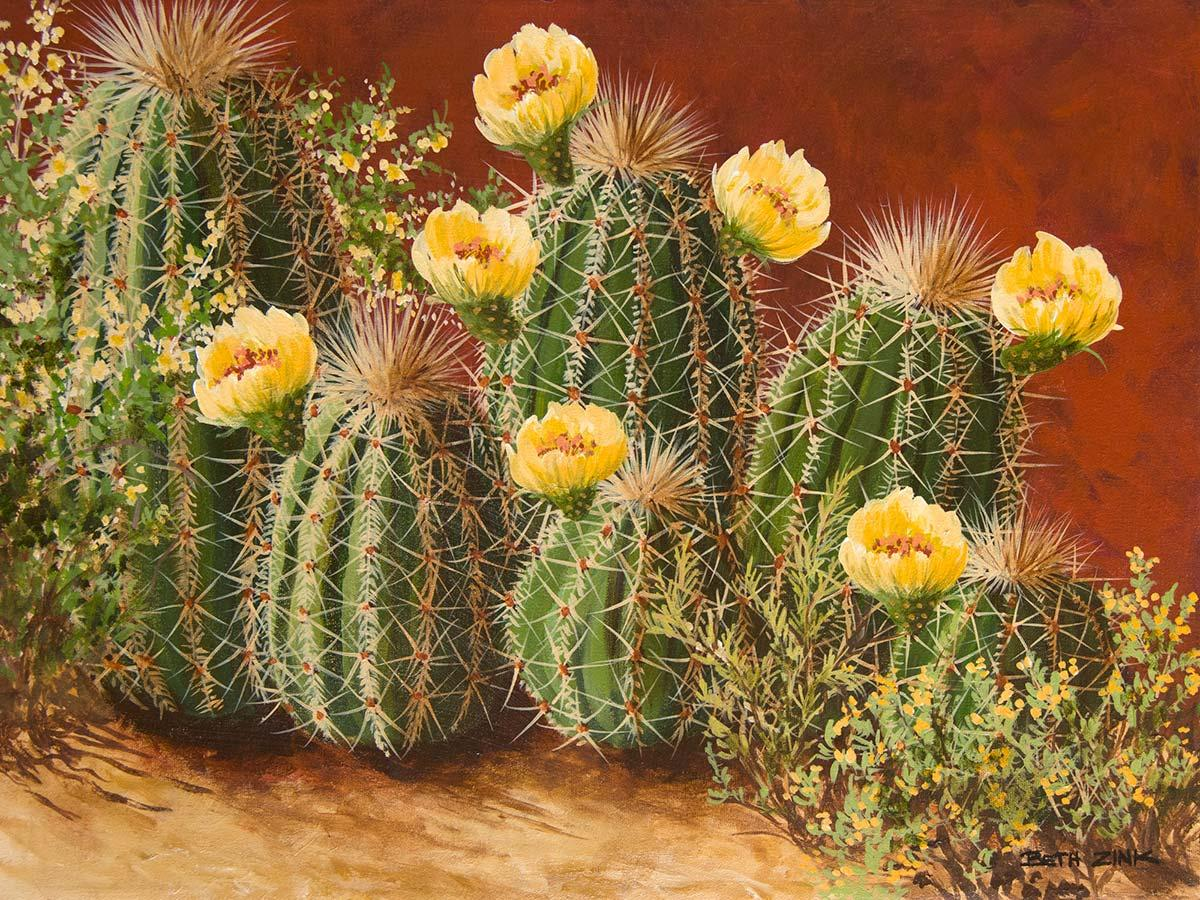 beth zink painting barrel cactus with yellow flowers